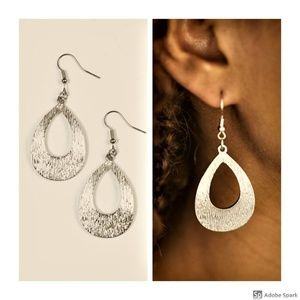 Been There, SHEEN That - Silver Fishhook Earrings